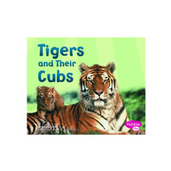 Tigers And Their Cubs (Paperback)