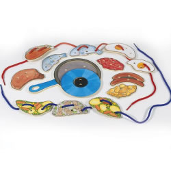 Frying Pan & Food Lacing Set