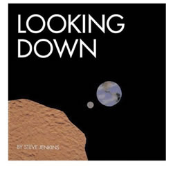 Looking Down (Paperback)