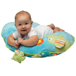 Boppy® Slideline™ Slipcover