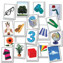Phonemic Awareness Learning Card Set