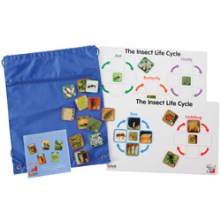Insect Life Cycle Game