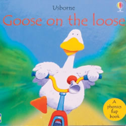 Goose on the Loose (Board Book)