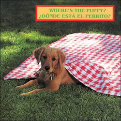 Where's the Puppy? - Board Book