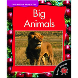 Big Animals - Paperback