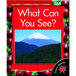 What Can You See - Paperback