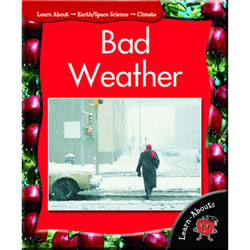 Bad Weather - Paperback