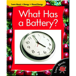 What Has A Battery - Paperback