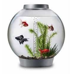 BiOrb 8 Gallon Aquarium