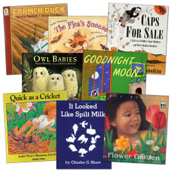 Assorted Big Book Stories - Set B (Set of 8)