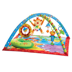 Gymini® Monkey Island Activity Gym