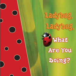 Ladybug, Ladybug, What Are You Doing?