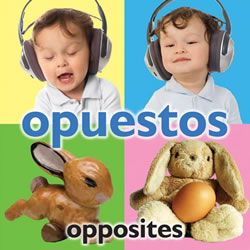 Opuestos - Board Book