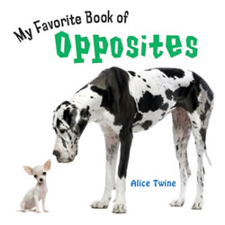 My Favorite Book of Opposites - Board Book