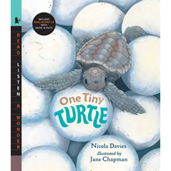 One Tiny Turtle - Paperback & CD