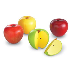 Magnetic Apple Fractions