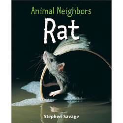 Animal Neighbors: Rat - Paperback