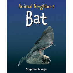 Animal Neighbors: Bat - Paperback
