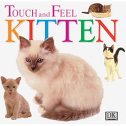 Kitten Touch and Feel (Board Book)