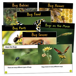 Comparing Bugs Book Set - English (Set of 6)