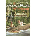 Afternoon On The Amazon (Paperback)