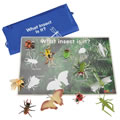 Insect Match & Learn