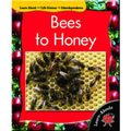 Bees To Honey - Paperback
