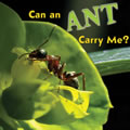 Can an Ant Carry Me? - Board Book