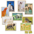 Mother and Baby Animal Puzzles
